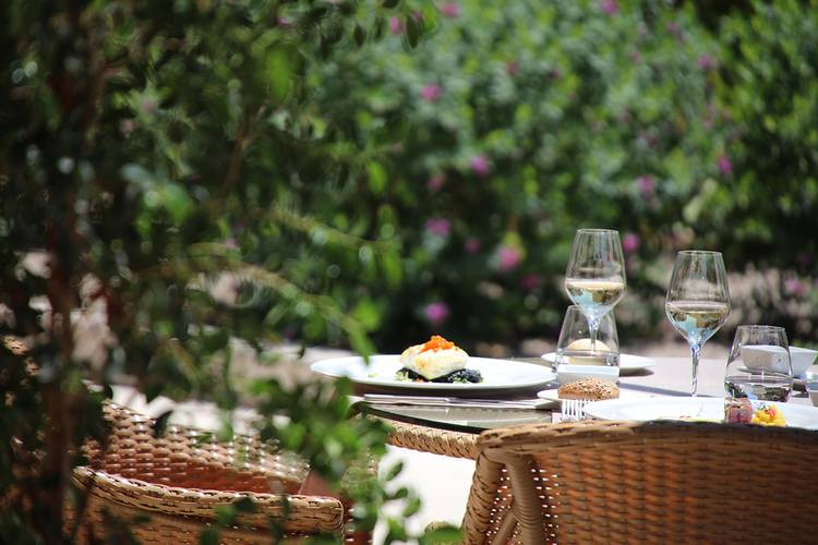 Son Julia Country House - Llucmajor -